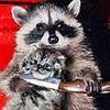 чтомая енот с ножом и котенок очаговая симптоматика