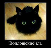 Фотография Sergey Rubtsov